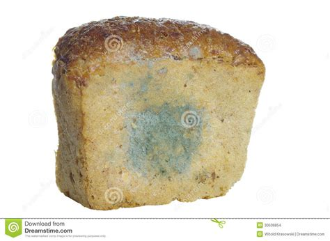 Mouldy Bread Stock Images - Image: 30536854