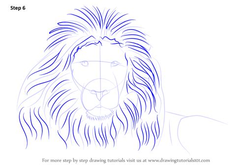 Learn How to Draw a Lion's Face (Big Cats) Step by Step