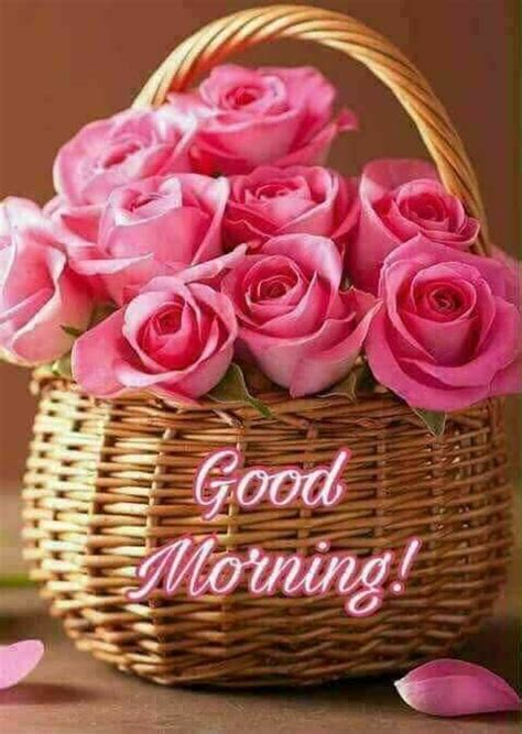Good Morning Basket Of Roses Pictures, Photos, and Images